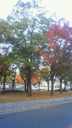広島で試験でした。